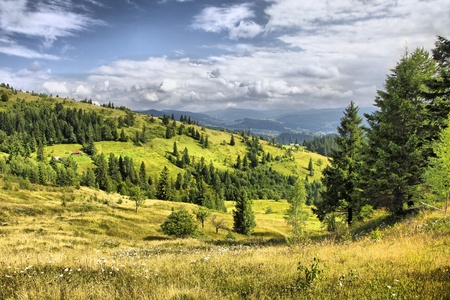 Mountains landscape near Yaremche village in Carpathians, Ukraine (HDR filter)