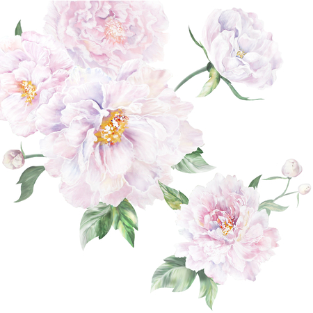 Photo for peonies - Royalty Free Image