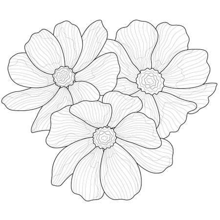 Illustration pour Beautiful flowers.Coloring book anti stress for children and adults. Zen-tangle style.Black and white drawing - image libre de droit