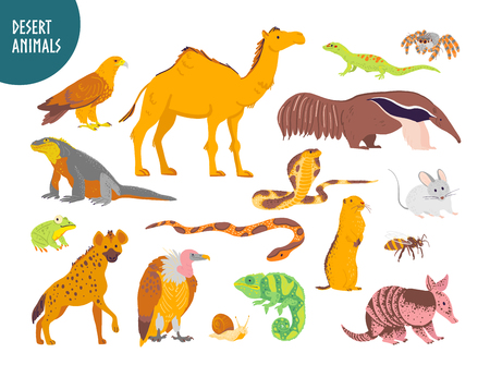 Ilustración de Vector collection of flat hand drawn desert animal, reptiles, insects: camel, snake, lizard isolated on white background. For children book illustration, alphabet, zoo emblems, banners, infographics. - Imagen libre de derechos