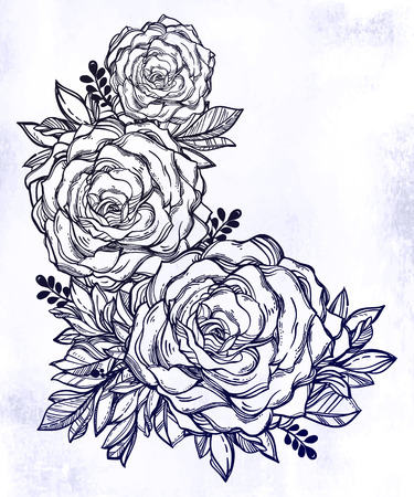 Vintage floral highly detailed hand drawn rose flower stem with roses and leaves.