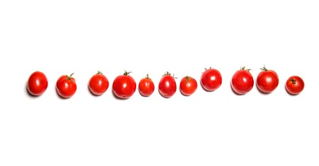 Row of fresh vine tomatoes isolated on white. Top view. Similarity or relatives conceptの写真素材