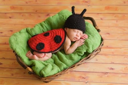 fedcd18d139 Three 3 week old newborn baby girl wearing a crocheted black and red  ladybug costume The