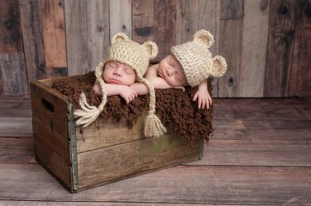 Foto de Four week old fraternal, twin, newborn baby boys wearing bear hats and sleeping in a vintage, wooden crate. Shot in the studio on a wood background. - Imagen libre de derechos