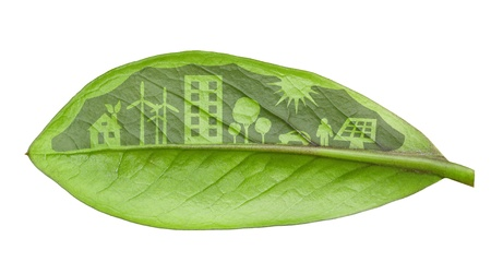 Green city concept, cut the leaves of plants, isolated over white