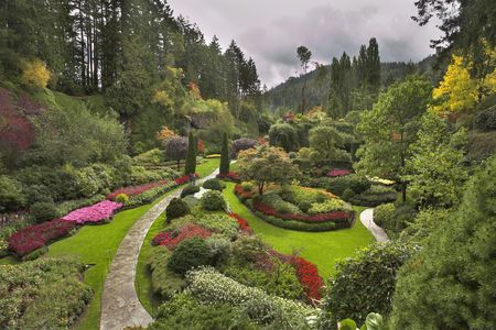 Phenomenally beautiful and picturesque garden for walks and supervision over flowers and trees