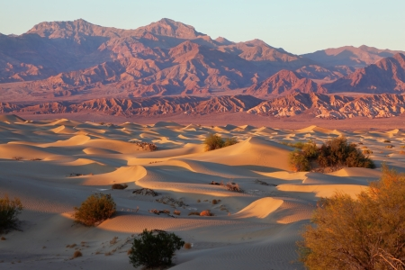 A unique place in Death Valley - Mesquete Flat Sand Dunes. Soft, sandy orange waves lit by the rising sun