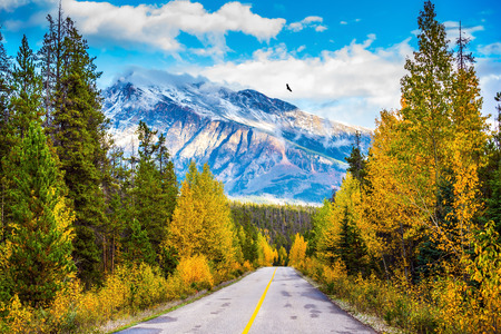 Foto de The road goes into the distance. Canadian Rockies in beautiful September day. Great Highway is among the mountains and forests yellowed - Imagen libre de derechos