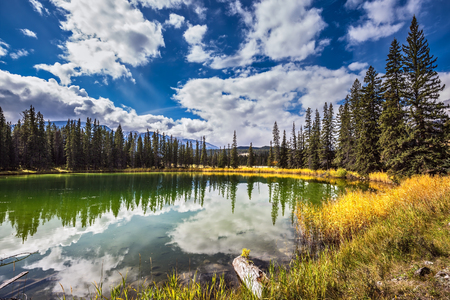 Photo pour The shoaled round lake in autumn wood. Autumn day in Jasper National Park in the Rockies of Canada - image libre de droit
