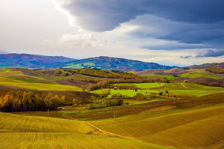Photo for Picturesque hills of the legendary Tuscany. Agro-tourism. Rural farms. Olive trees on green grassy meadows. Beautiful Italy. - Royalty Free Image