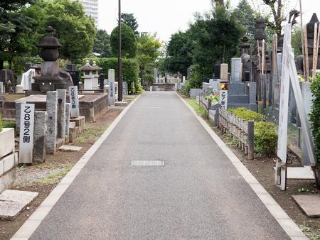 Kawamuralucy170200375