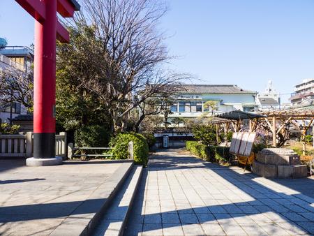 Kawamuralucy170201963
