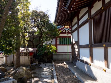 Kawamuralucy170201985