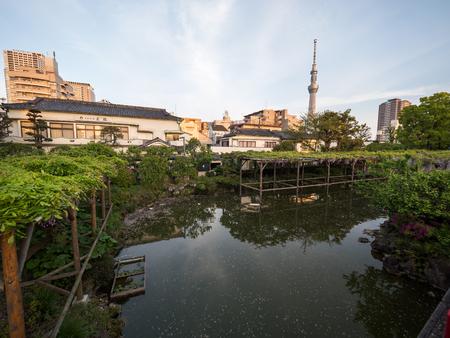 Kawamuralucy170500403