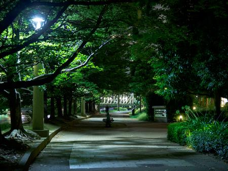 Kawamuralucy180700472