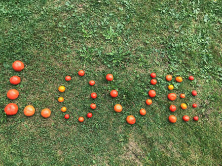 Foto de A word from a tomato, letters L, O, V, E. The word LOVE. Letters from red and yellow tomatoes on green grass. Healthy food, weight loss. Healthy habits, tomatoes for pasta and pizza. - Imagen libre de derechos