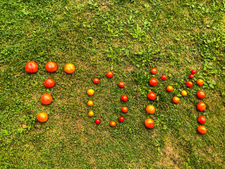 Foto de Tomato lettering. Word made from vegetables. the letters T, O and M, the word TOM are lined with red and yellow, round tomatoes. Against the background of the grass. Tomato story, creative lettering. - Imagen libre de derechos