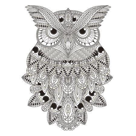 Sumptuous Owl Illustration