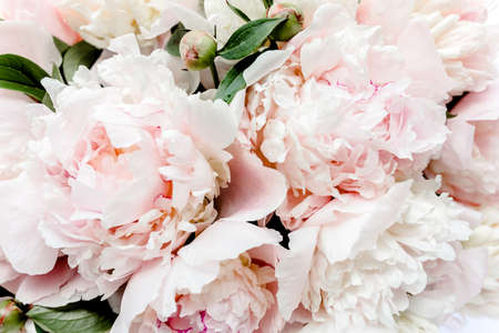 Photo for Bouquet of a lot of peonies of pink color close up. Flat lay, top view. Peony flower texture. - Royalty Free Image