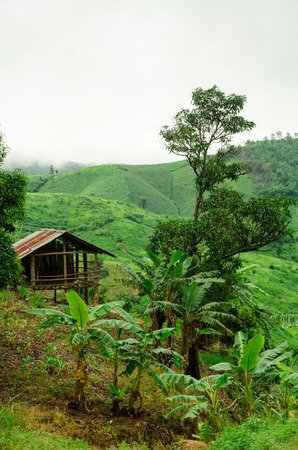 Small hut in mountain, Thailand