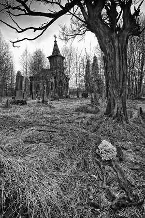 destroyed the old cemetery - the place of horror (BW)