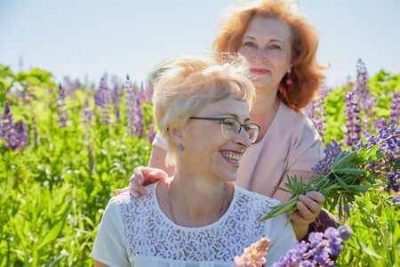 Foto für Two female friends in field with purple flowers. Chubby and slim middle-aged women pensioners having rest in a green lavender field on a Sunny summer day. Two sisters in flowers - Lizenzfreies Bild