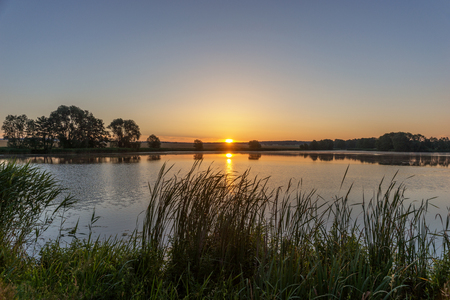 Beautiful sunrise in the summer by the lake. Saxony in Germany