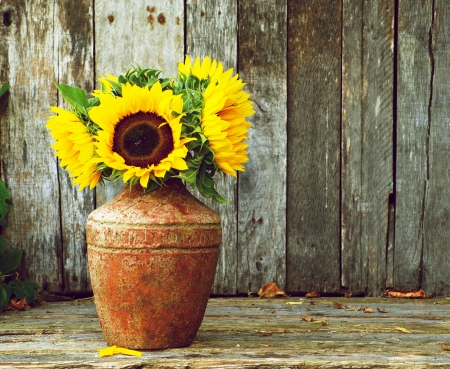 Colorful, high contrast and highly defined vintage style image of a rustic vase with beautiful sunflowers in the partial shade on a rustic, grunge background with copy space
