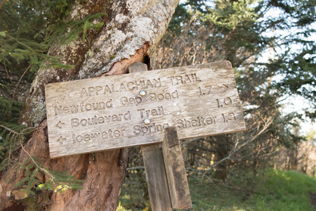 Appalachian Trail Distance Sign Leans Against Tree