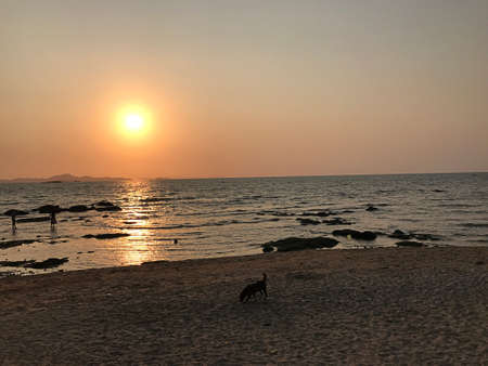 Evening scenery view of Pattaya beach in Thailand.