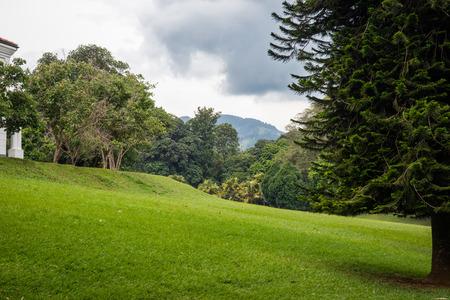 Sri Lanka. Kandy - August 16, 2015. The Royal Botanic Garden.