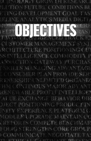 Objectives in Business as Motivation in Stone Wall