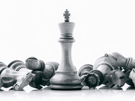 Photo pour Black and White King and Knight of chess setup on dark background . Leader and teamwork concept for success. Chess concept save the king and save the strategy. - image libre de droit