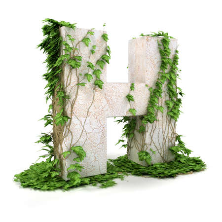 Letter H threads covered with ivy isolated on white background.