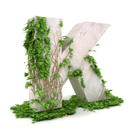 Letter K threads covered with ivy isolated on white background.
