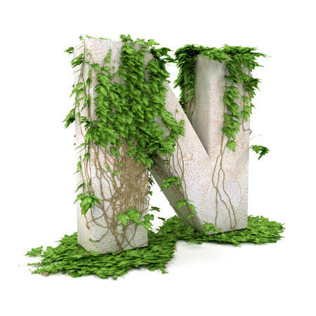 Letter N threads covered with ivy isolated on white background.