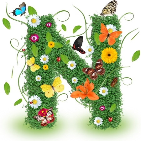 Beautiful spring letter N
