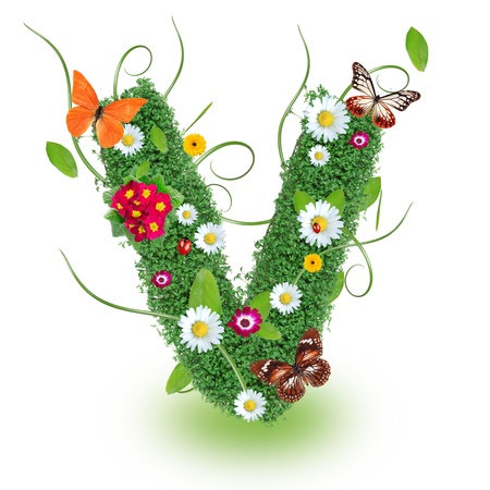 Beautiful spring letter  V