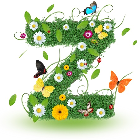 Beautiful spring letter  Z