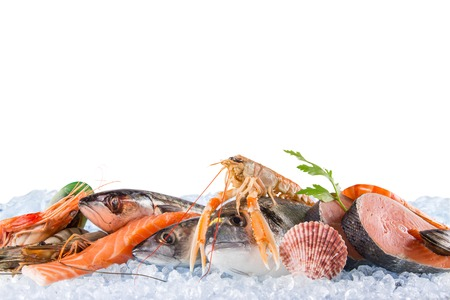 Photo for Fresh seafood on crushed ice, close-up. - Royalty Free Image