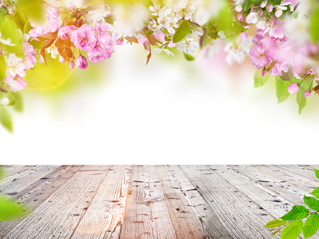 Foto de Nature background with wooden table with space for your product. - Imagen libre de derechos