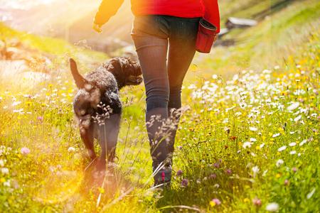 Foto de Young woman with her dog walking on meadow. - Imagen libre de derechos