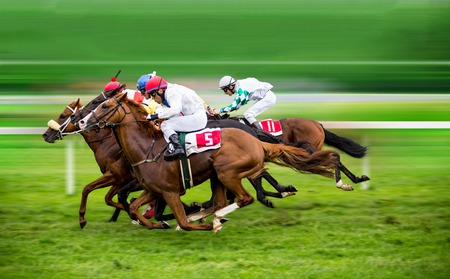 Photo pour Race horses with jockeys on the home straight - image libre de droit