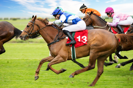 Foto de Race horses with jockeys on the home straight - Imagen libre de derechos