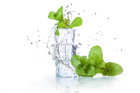 Photo pour ice cubes and splashing water with mint on a white background - image libre de droit
