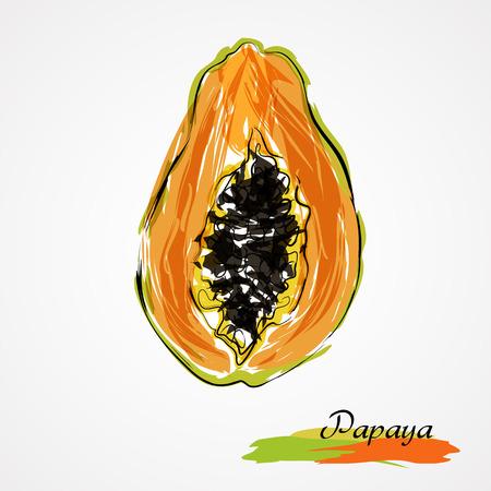Hand drawn vector ripe half of, slice papaya fruit on light background