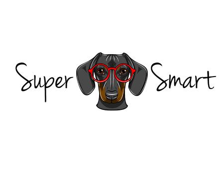 Illustration pour Dachshund geek. Dog in smart glasses. Super smart inscription. Vector illustration. Red eyeglasses. - image libre de droit