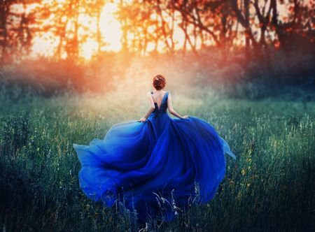 Foto de princess, with a elegant hairstyle, runs through a forest meadow to meet a fiery sunset with a haze. A luxurious blue dress with a long train flutters in the wind. Photo from the back without a face. - Imagen libre de derechos