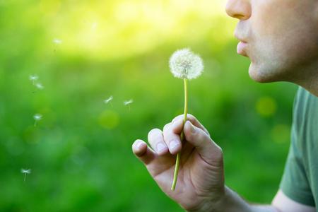 Photo pour Man blowing dandelion over blured green grass, summer nature outdoor, detail - image libre de droit