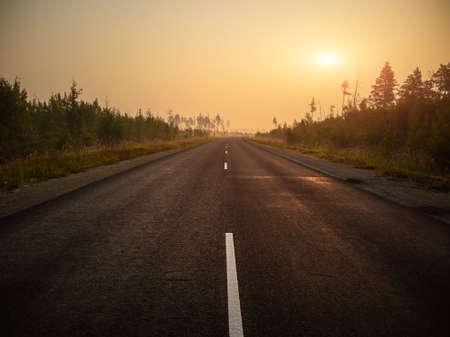 Photo pour Empty asphalt road, track in the forest at dawn. Summer landscape. - image libre de droit